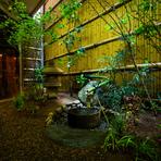 カウンター席から見える坪庭は、京都龍安寺の「吾唯足知の蹲踞(くつばい」をイメージしており、手水鉢も龍安寺のものを再現。季節の移ろいを楽しめるように、庭木は年に5回植え替えています。