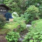 那須の自然の中で絶品蕎麦を堪能してください。  テラス席の近くには小川が流れれいます。 2席のみとなり、ご利用の際はスタッフへお声かけてください。
