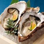 時期によって産地を変えており、広島県や北海道からブランドものの牡蠣を仕入れ。スダチを絞るもよし、割りポン酢をかけるも良し。口の中に広がる磯の香り、旨味に思わず笑みがこぼれそうです。