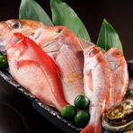 料理長が長年のキャリアの中で築いた生産者との絆を活かし、全国から最高の旬食材を取り揃え。宮城、山口、金沢などの好漁港直送の鮮魚、地元・鎌倉や三浦の季節野菜、京都の伝統野菜など、逸品食材が揃います。