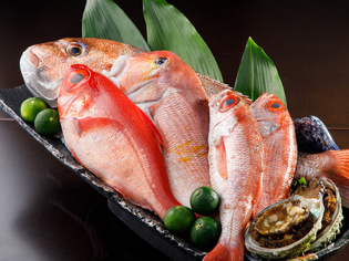 宮城県直送の旬魚介、鎌倉や三浦の新鮮野菜、京野菜が集う