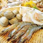 好きな食材が選びたい放題!新鮮な魚介が楽しめる♪お子様もお楽しみいただけます★