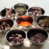 本場インドのハーブ&スパイスを独自のアレンジで提供する夜のアラカルトをぜひ味わって