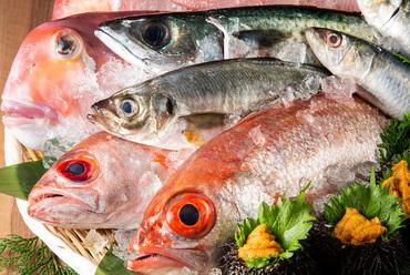 匠の技で、おいしい逸品へと生まれ変わらせていく『鮮魚』