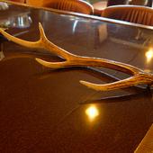 大きなカウンターテーブルには、鹿の角のオブジェ