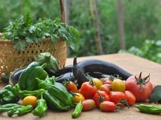 契約農家から仕入れる野菜をはじめ、新鮮な食材のみを使用