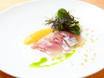 鮮度よく旨みたっぷり!「神経締め」した旬魚の料理