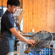 「自慢の魚介をおいしく食べてもらいたい」と語る長浜氏。魚の種類に合わせた調理を施し、素材の味を引き出した料理で楽しませてくれます。また、スタッフと連携し、居心地の良い空間づくりにも尽力しているそう。