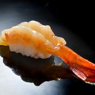 特製の海老醤油に2晩ほど漬け込み、旨みをしっかりと凝縮させた逸品。程よく弾力のある歯ごたえが絶妙で、柑橘の風味がアクセントに。口の中で崩れるシャリとのバランスも格別です。