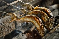 炭火で旨みを閉じ込めた、夏の焼き物の定番『天然あゆ塩焼き』