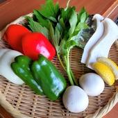 全国各地から仕入れる、四季折々の「旬野菜7~8種」