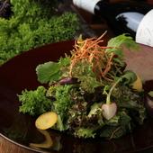 13~15種類の野菜がたっぷり。野菜の味の濃さに驚くこと必至の『長野の農家さんのオーガニックサラダ』