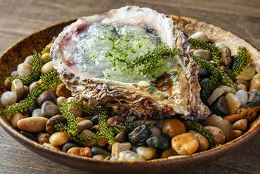 濃厚な牡蠣の旨みにライムの風味『岩牡蠣とアボカド 海水のジュレ』