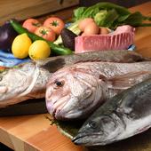 姫路の海でその日に獲れた新鮮な魚介を厳選
