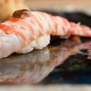 画像は、長年握り続けている鮨の一つ「車海老」。半生にボイルすることで、プリッとした生の食感と海老の甘みの両方を楽しむことができます。海老味噌は上品なアクセントに。