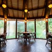 まるで森の中で食事をしているような、開放感あふれる空間