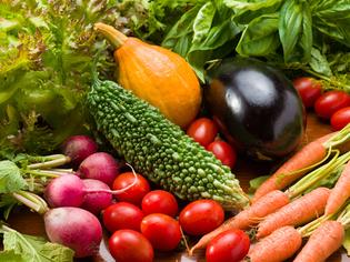 毎朝仕入れる信頼と高品質の「鎌倉野菜」