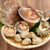 本日の貝の盛り合わせ