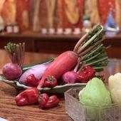 小田原産新鮮野菜
