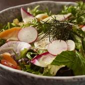 地野菜堪能サラダ